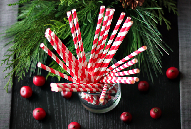 Crate and Barrel Stripes Straws